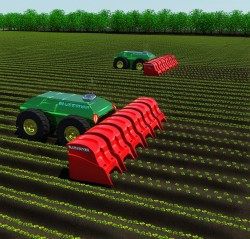Weed Control Of The Future?