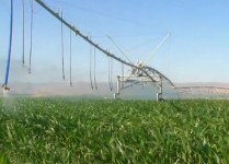 Custom Corner Pivot Irrigation System, Lindsay