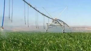 T-L Irrigation Launches GPS Pivot Corner System Management
