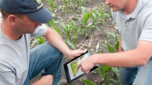 The Globalization Of Precision Agriculture