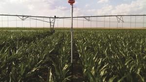 Valley Launching SoilPro 1200 Moisture Monitoring Technology