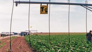 T-L Irrigation: Boosting Efficiency