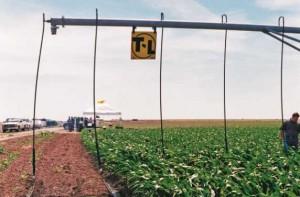 T-L Precision Mobile Drip Irrigation System