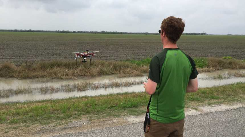An Agribotix pilot flies over emerging corn.