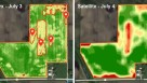 Mavrx imagery Comparison