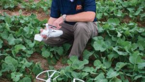 Brian Arnall Named 2016 Precision Ag Educator Of The Year