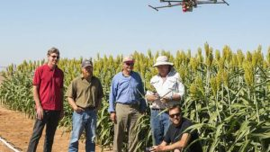 High-Tech Agriculture Continues To Reap Rewards For Farmers