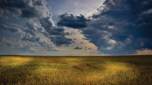 Field Sky Beauty shot