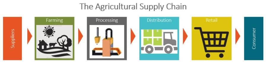 Agricultural Supply Chain Graphic