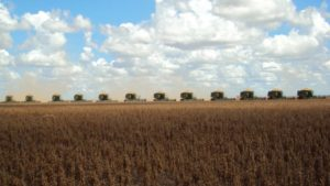 Inside The Life Of A Precision Agriculture Consultant In Brazil