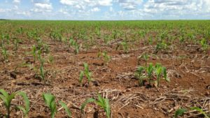 A Precision Agriculture Project Starts With A Solid Foundation