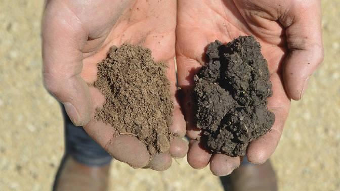 Two soils