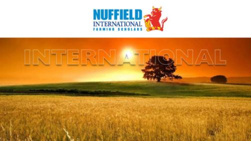 Nuffield Scholarship