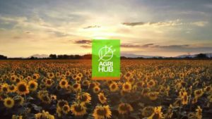 AgriHub: Connecting Brazilian Producers to Technologies Worldwide