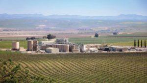 Delicato Family Vineyards: Integrating Ag Tech from Soil to Glass
