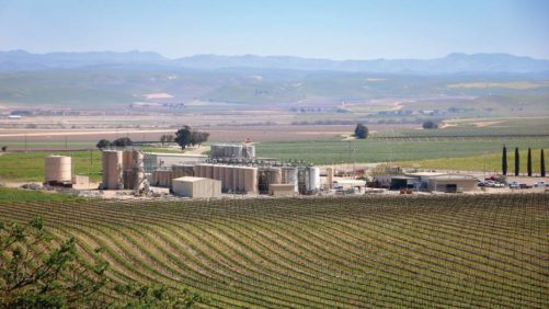 Delicato Family Vineyards, Manteca, CA.