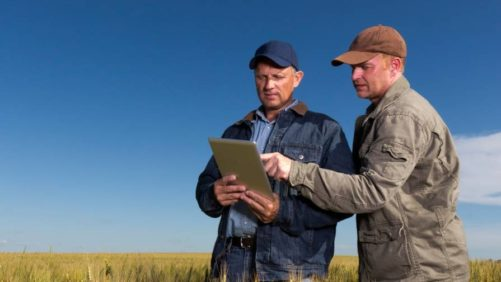 Farmers on Tablet Photo Credit All About Food