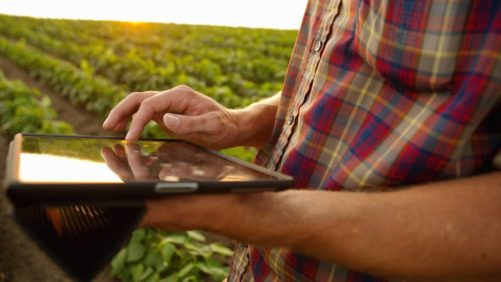 Farming iPad