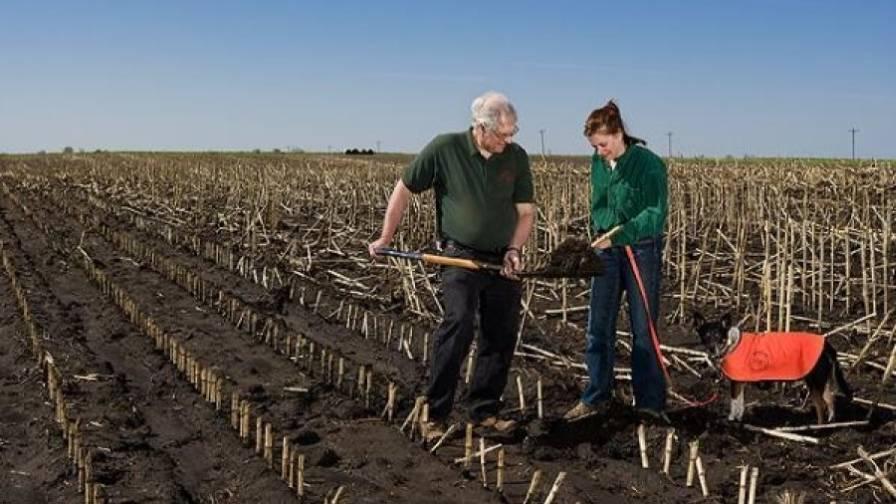 Accessing USDA Soil Data for Precision Farming - PrecisionAg