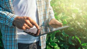 The Power of Predictive Analytics in Agriculture