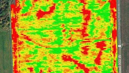Yield Data Image