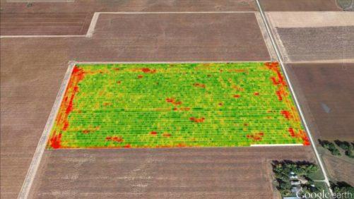 Yield-Data-image