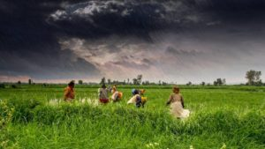 India to Set Up Cloud-based Digital Platform to Provide Ag Solutions for Farmers