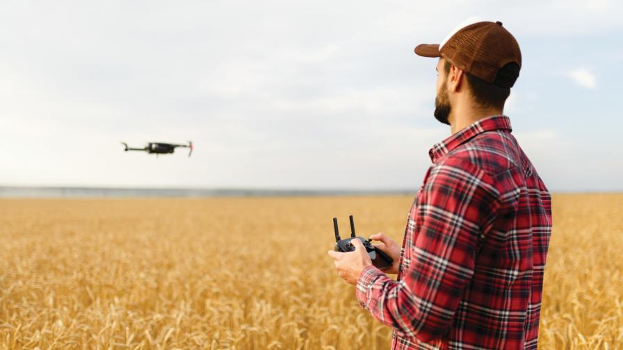 drone-wheat-field
