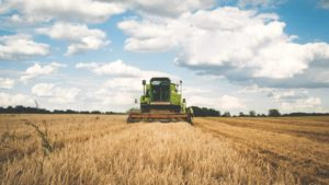 Machine Learning: The Secret Sauce of Precision Agriculture for Fighting Crop Diseases