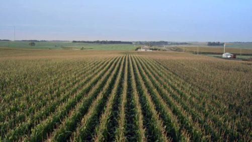 South-Dakota-farm