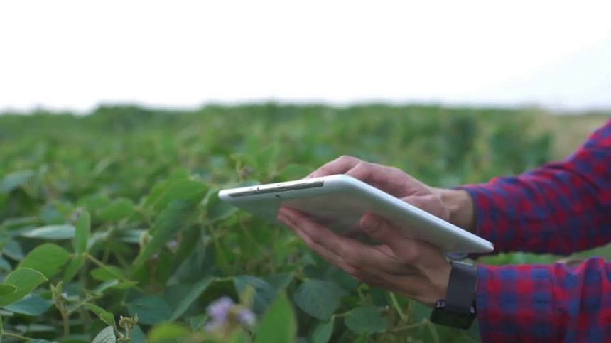 Opinion: The Missing Link in Precision Agriculture