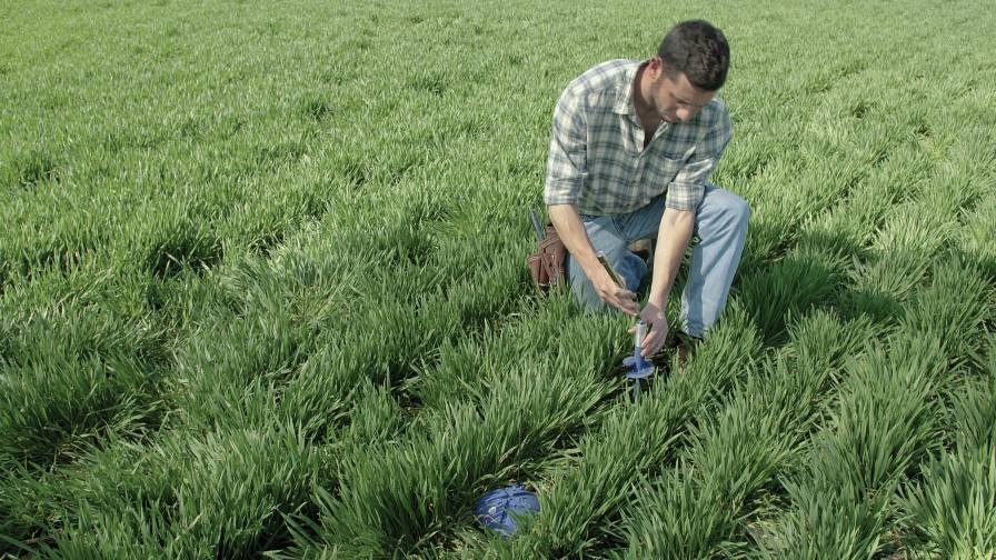 Soil Sensors: A New Direction in Precision Agriculture to Improve