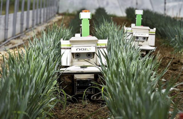 Rise of Robotics: Q&A with Naïo Technologies CEO