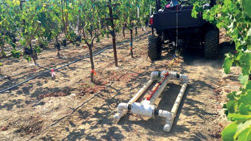 vineyard-canopy-sensing