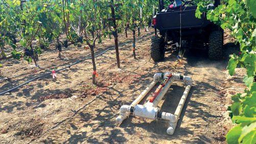 vineyard-canopy-sensing
