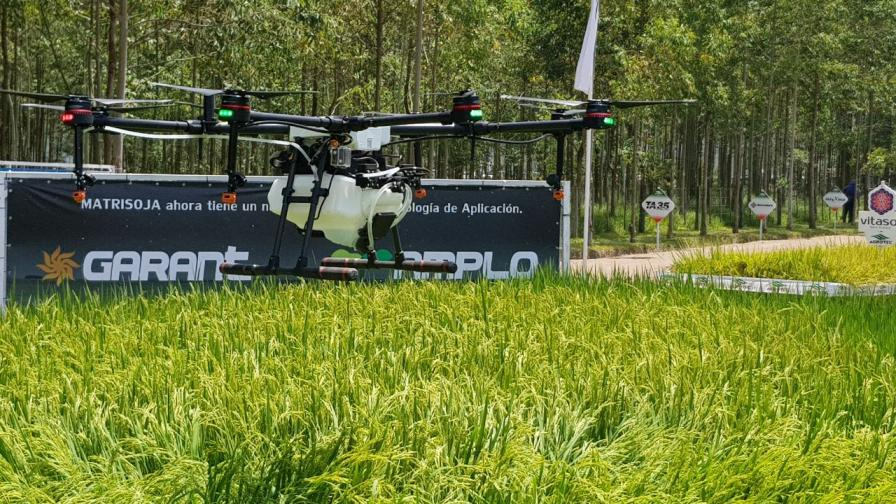 Paraguay: A Country with Many Opportunities in Precision Agriculture