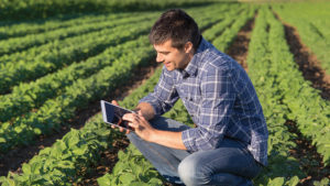 Survey: Vegetable Growers Embrace Precision Agriculture