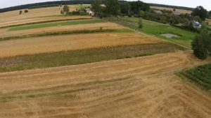 Europe: A Look at Precision Agriculture Adoption in Poland