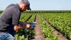 Australia Leads the Way in Agtech Innovation