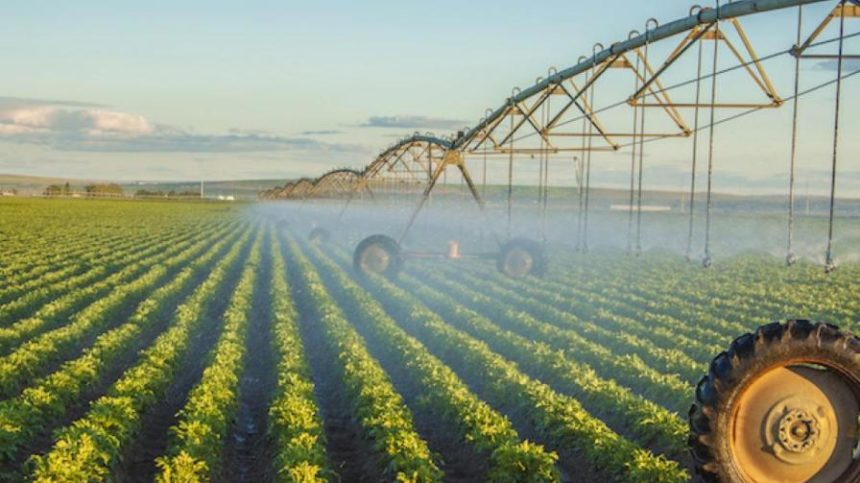 Precision Irrigation Scheduling: Should We Have a Problem? (Part 2)