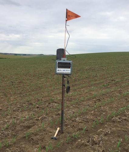 Precision Irrigation Scheduling: Can We Cross The Chasm? (Part 3)
