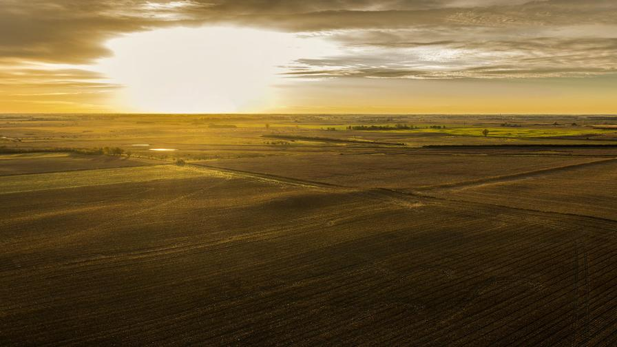 The Impact of Reshaping Agriculture with Technology