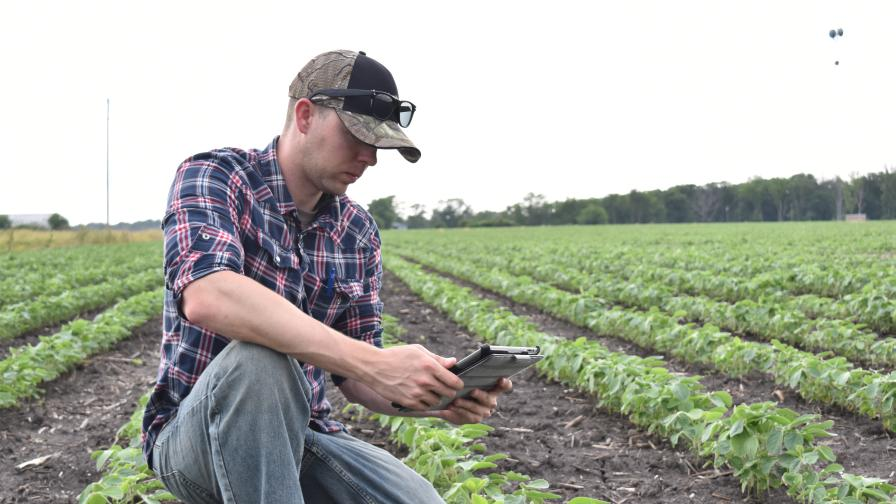 Eric Groover with iPad in a soybean field